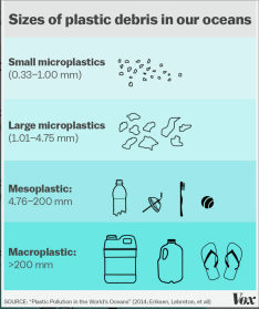Plastic Debris in Our Oceans