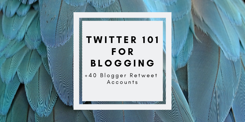 Twitter 101: Essential Tips for Bloggers